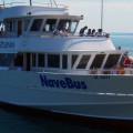 Navebus (Schiffsverbindung zwischen Porto Antico und Pegli)